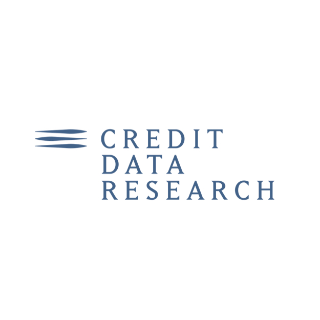 Supervision, Risks & Profitability 2019 CREDIT DATA RESEARCH Logo