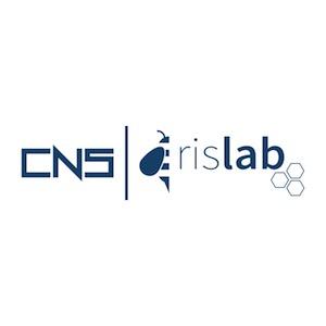 cnsrislab - Banche e Sicurezza