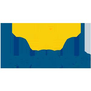 Il Salone dei Pagamenti DOMEC SOLUTIONS Logo