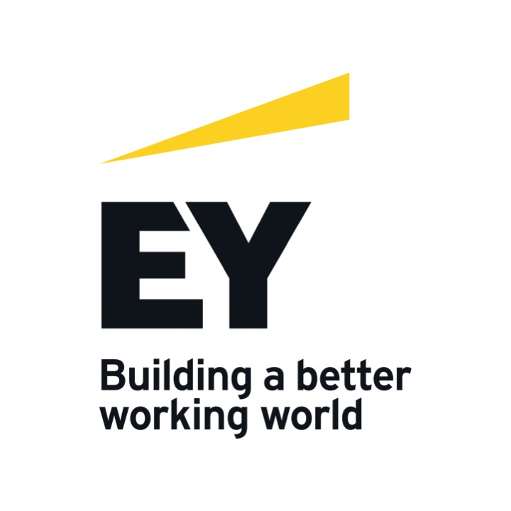 Supervision, Risks & Profitability EY Logo