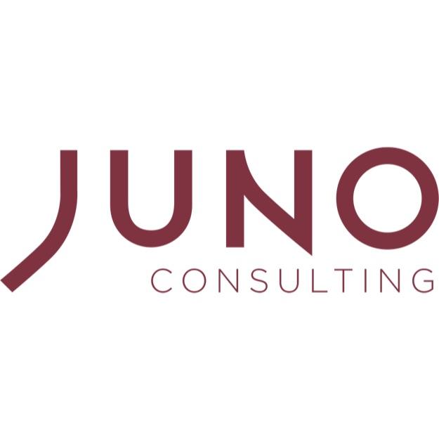 Supervision, Risks & Profitability 2019 JUNO Consulting Logo